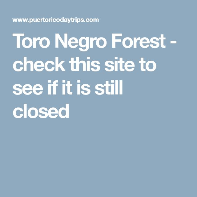 Toro Negro Forest - check this site to see if it is still closed