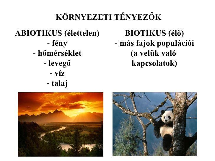 biotikus környezeti tényezők - Google keresés