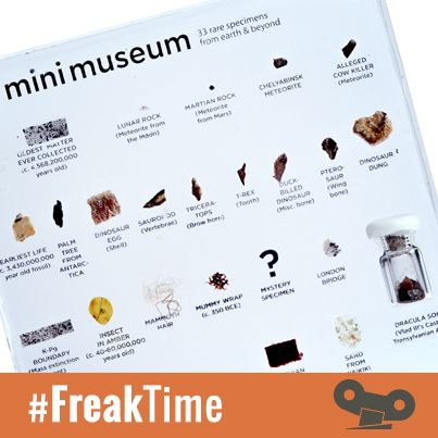 ¿Imaginas tener fragmentos de dinosaurio, meteoritos, etc. en tu salón?  #MiniMuseum #FreakTime http://goo.gl/lMgvTj