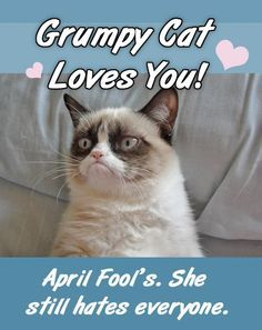 april fool sms in hindi april fools text messages for boyfriend making fool sms april fool messages for whatsapp funny fool sms i love you prank sms whatsapp fooling messages april fools messages