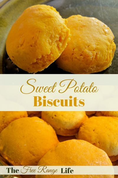 Sweet potato biscuits are a wonderful alternative to buttermilk biscuits and they are packed full of nutrients that sweet potatoes are known for!