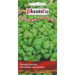 Portulaka warzywna do sałatek Nasiona PlantiCo