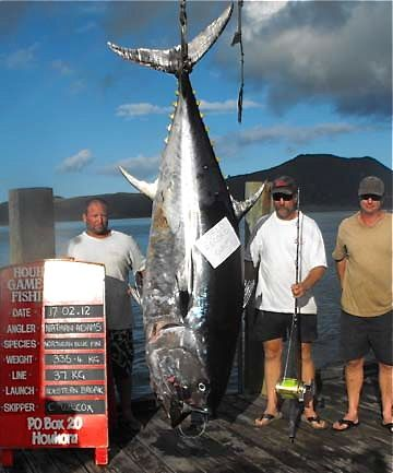 Oh wow.  It's a 738 pound Pacific bluefin tuna, setting a record for the largest fish ever caught on a rod and reel. Catching something even a fraction of that size is on my can-die-happy list!