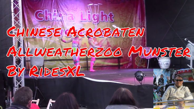 Chinese Acrobaten in Allweatherzoo Munster 2017
