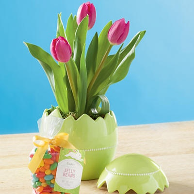 68 best hoppy easter images on pinterest hoppy easter easter gift easter tulips plant gift this tulip comes pre planted in a unique easter egg negle Choice Image