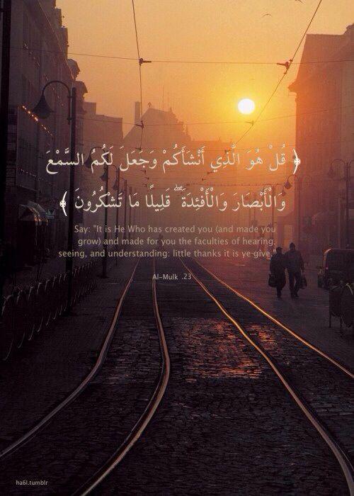 Al Qur'an Surah Al Mulk (The Sovereignty)   67:23