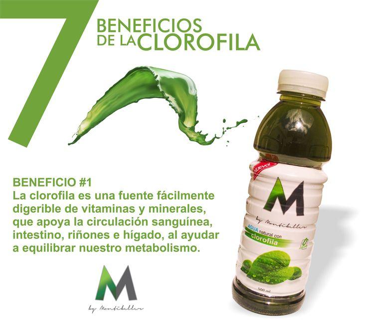 7 beneficios de la clorofila #1