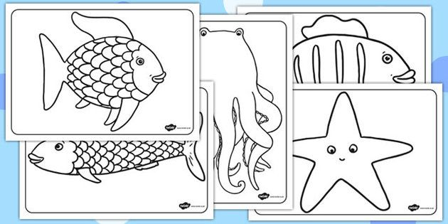 The Rainbow Fish Colouring Sheets - The Rainbow Fish, Marcus Pfister, resources, Rainbow Fish, PSHE, PSE, octopus, shimmering scales, starfish, friendship, under the sea, sea, story, story book, story book resources, story sequencing, story resources