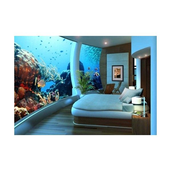 "1039 Best Images About Aquariums And ""tanked"" Aquariums"