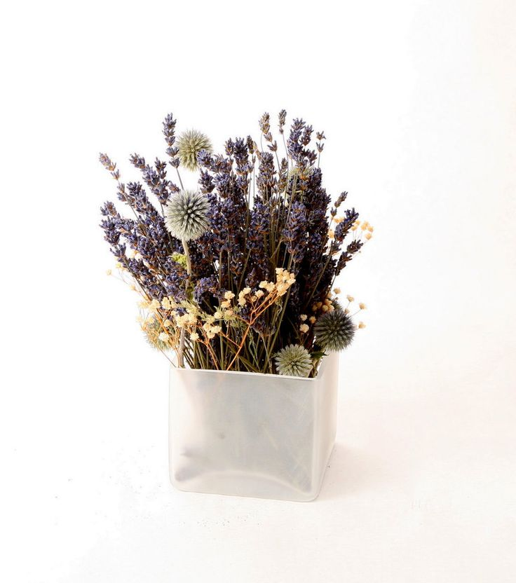 Dried floral arrangement: Small frosted vase, dried lavender, blue globe thistle, and baby's breath.. $27.50, via Etsy.