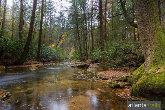 The rushing waters of Noontootla Creek are surrounded by beautiful secluded forest, perfect for camping, at Three Forks in Georgia