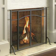 Hyde Park Flat Panel Fireplace Screen with Doors