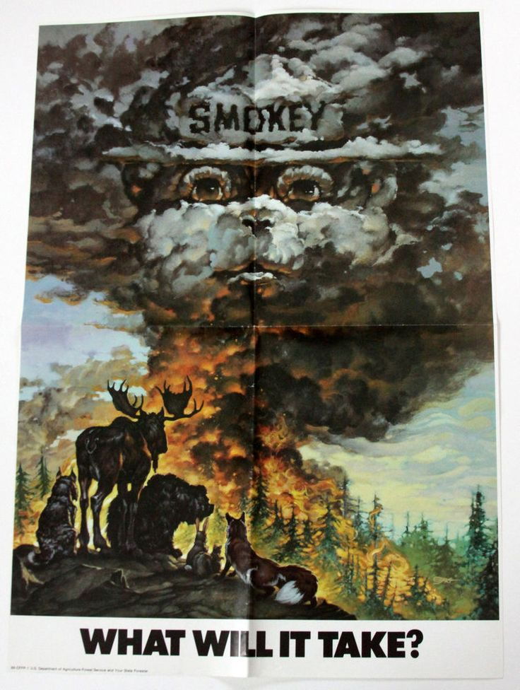 Vtg 1986 Poster What Will It Take Smokey Bear US Dept Agriculture Forest Service