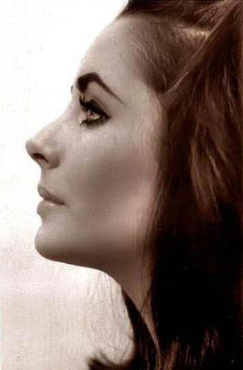 Rare Elizabeth Taylor Publicity Photos. Perfect, beautiful profile!
