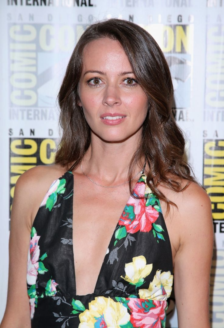 Amy Acker Nude Photos Top 213 best amy acker images on pinterest | amy acker, actresses and