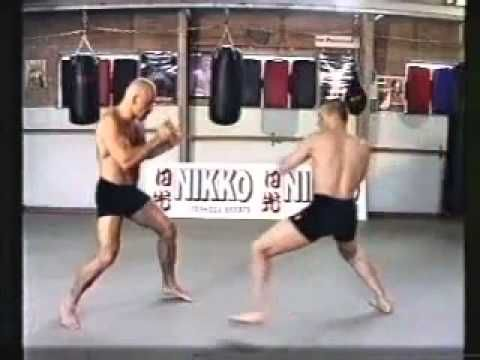 Some great techniques by Bas Rutten - Free Fight Techniques