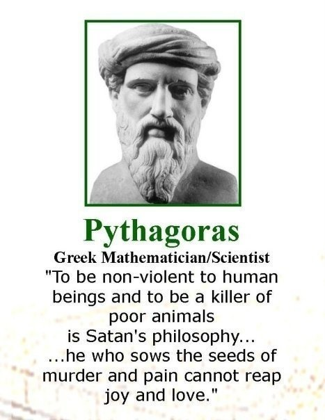 how to read greek philosophy