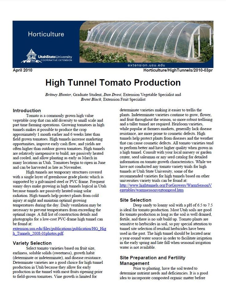 High Tunnel Tomato Production | USU