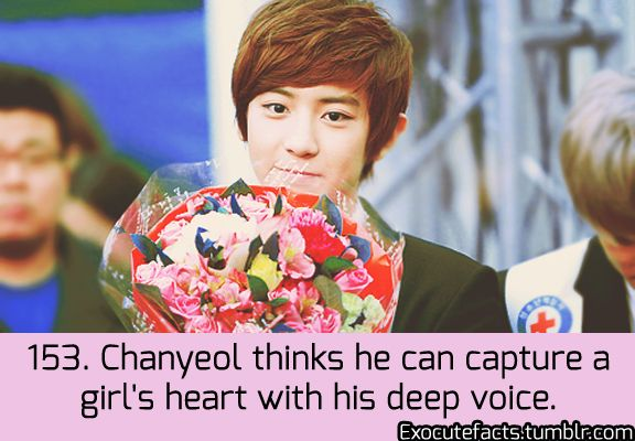 EXO Facts- He is so right. When I first heard his deep voice I was instantly sold, and now he's my bias.XD