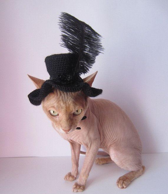 cat hat crochet cat hat animal hat cat cat costume Pet