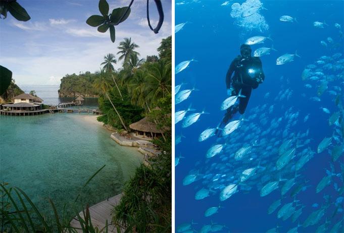 Indonesia. Scuba diving in Raja Ampat.