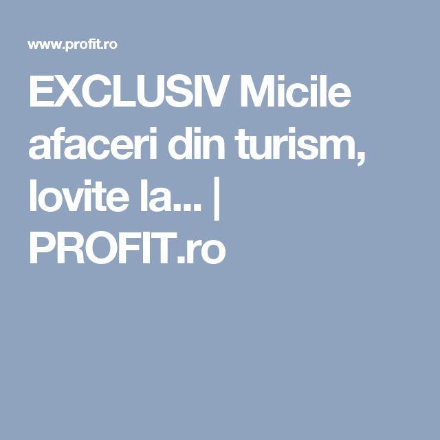 EXCLUSIV Micile afaceri din turism, lovite la... | PROFIT.ro