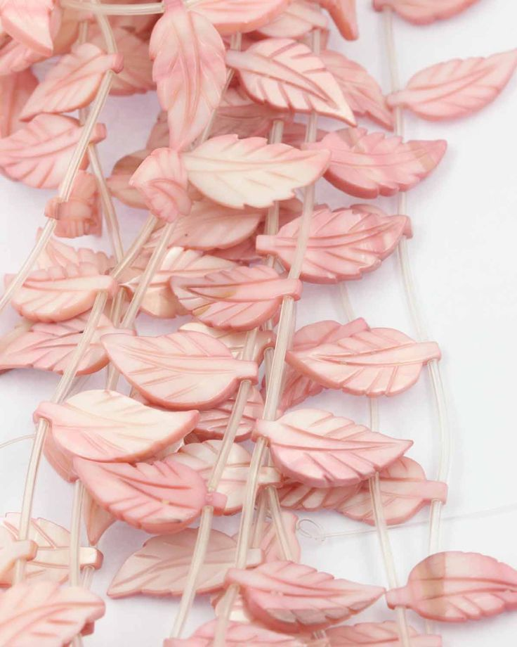 Mother of pearl pink leaf