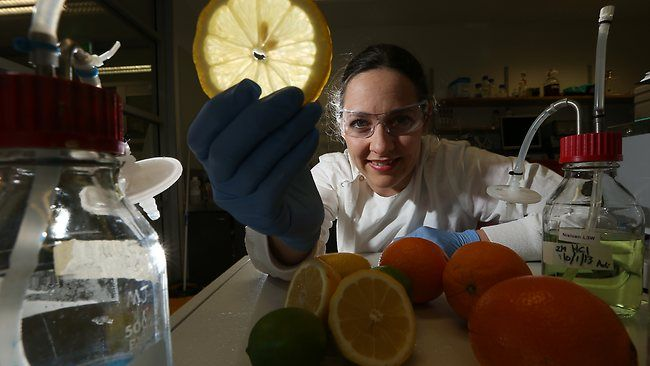 Lemons fly as the new juice of jet travel. Dr Claudia Vickers at the University of Queensland says sugarcane farmers will benefit from her work with bacterial or yeast cells and limonene. Picture: Lyndon Mechielsen Source: TheAustralian