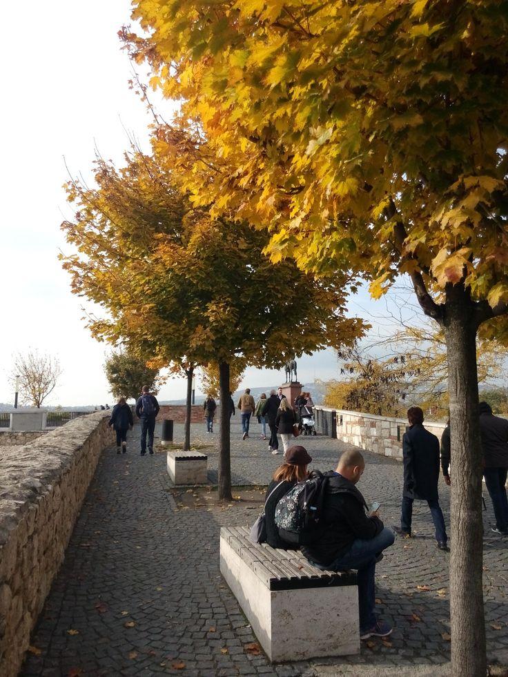 A walkway behind the Castle of Buda.