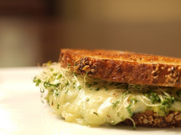 Jimmy John's Inspired Avocado & Alfalfa Sprouts Grilled Cheese
