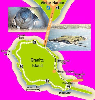 Penguin Tour at Granite Island - Victor Harbor