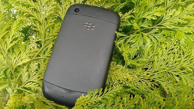 #inst10 #ReGram @leandromaxi6: Blackberry Curve 9300 2MP Camera  Apesar de não ter foco em fotografia o Curve 9300 não faz bonito em fotografia mesmo tendo somente 2MP o smartphone não possui foco na câmera mesmo assim é um smartphone que eu gosto muito ==================== Although it does not focus on photography the Curve 9300 does not look good in photography even though it only has 2MP the smartphone does not have camera focus it is still a smartphone that I like very much @AppLetstag…