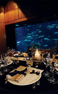 Disney Wedding Venues Gallery S Fairy Tale Weddings Reception Location Possibility