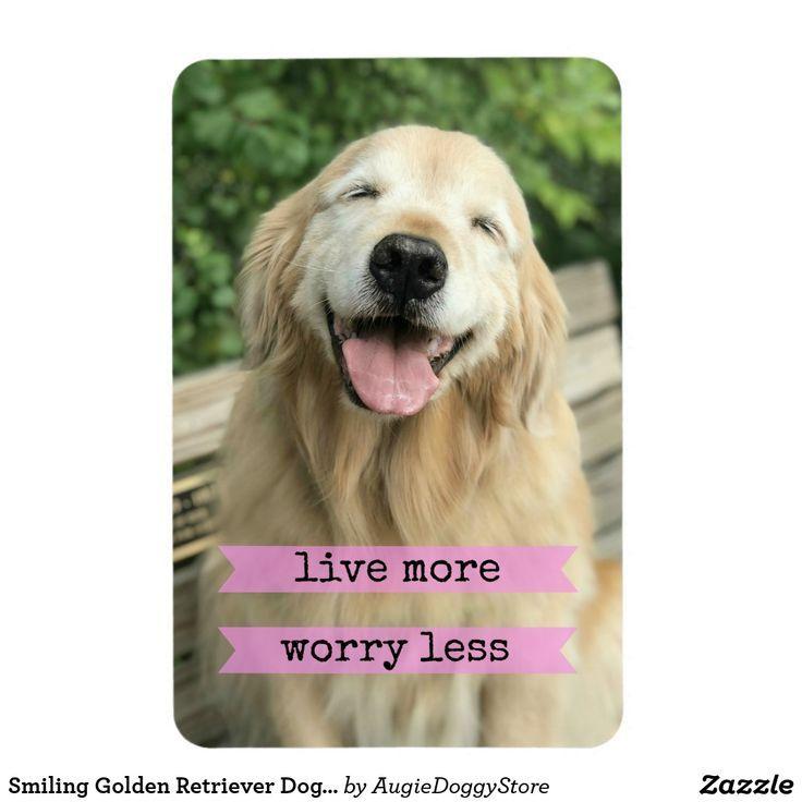 Smiling Golden Retriever Dog Live More Worry Less