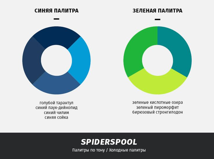 archventil_spiderspool_identity_color (2)