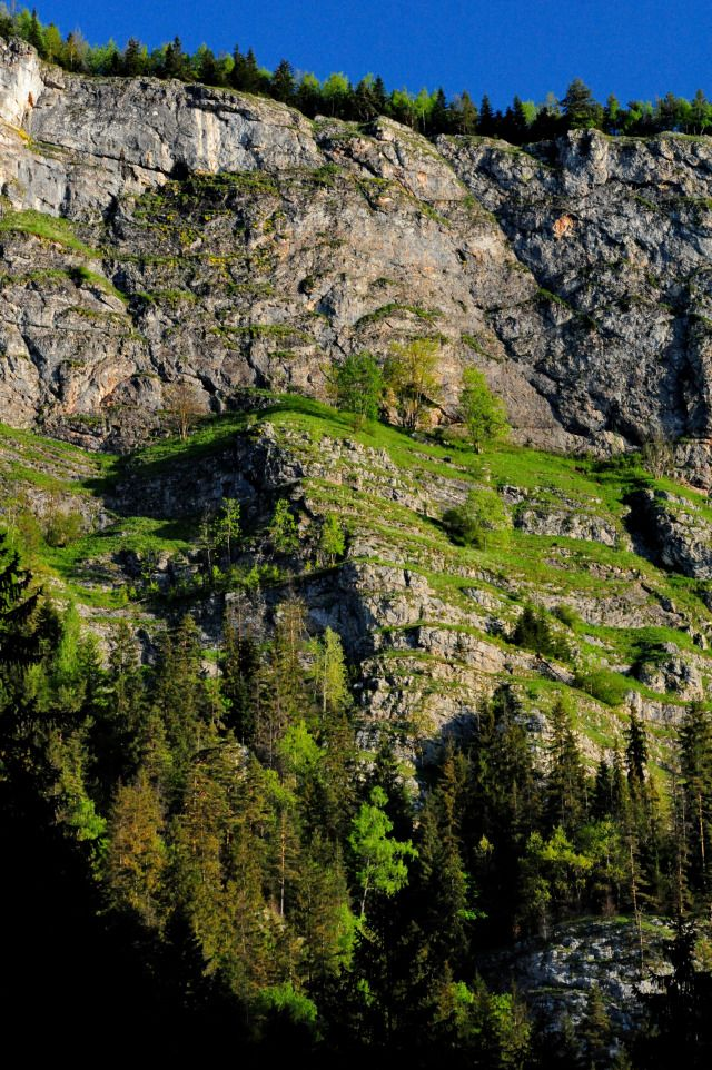 Neamt County: Bicaz Gorges