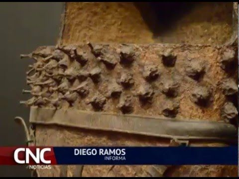 Cerámica de la cultura Malagana de Palmira expone por primera vez en el ...