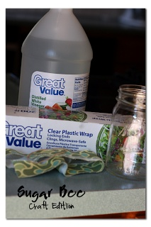 Gnat (fruit fly) Catcher: Fill your jar with abuot 1 inch of vinegar.  Wrap the top of the jar with a piece of seran wrap.  It'll probably just stick, but you can secure it with a rubberband if that makes you feel better.  Poke holes in the seran wrap top.