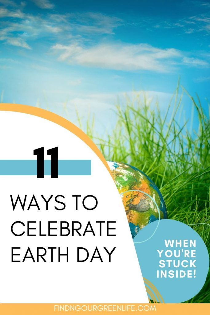 11 Ways To Celebrate Earth Day When You Re Stuck At Home In 2020 Earth Day Earth Business For Kids
