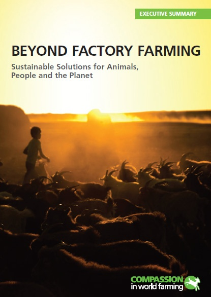 Beyond Factory Farming: Sustainable Solutions for Animals, People and the Planet
