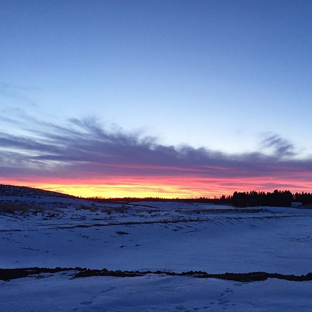 Have you seen the gorgeous sunsets in your community? A resident in #chappellegardens captured this the other night!