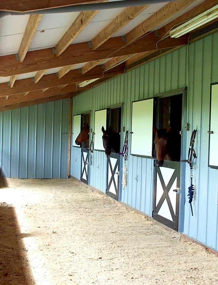 Best Horse Farm Images On Pinterest Horse Farms Dream Barn - Before and after achorse stable