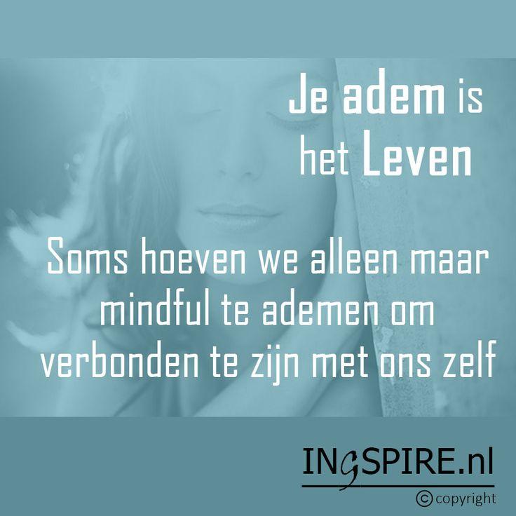 Copyright © citaat Ingspire.nl – bekijk alle citaten van inge Een rustige adem is veel waard Je adem is je anker, je levensenergie. Op elk moment van de dag kan je er naar toe gaan om weer even dicht bij jezelf te komen, om bewust te zijn van jezelf. Als onze ademhaling rustig wordt en …