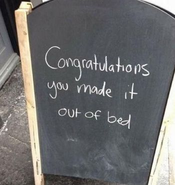 Congratulations You Made It Out Of Bed funny quotes quote jokes lol funny quote funny quotes funny sayings humor good morning funny signs