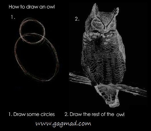 How+to+draw+an+easy+owl