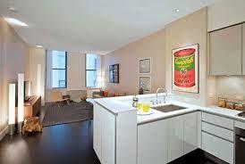 Afbeeldingsresultaat voor kleine open keuken