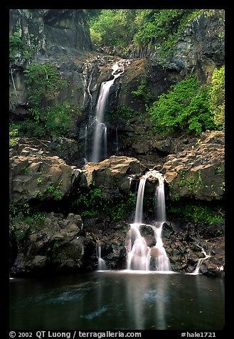Haleakala National Park, Hawaii, USA.