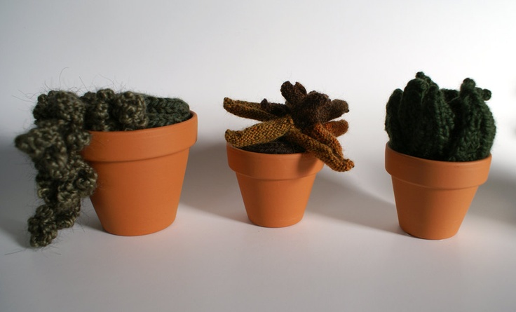 Knitted Plant Set of Three: Orange and Brown Leaves, Dark Green Leaves, Moss and Overhanging Tendrils. $100.00, via Etsy.