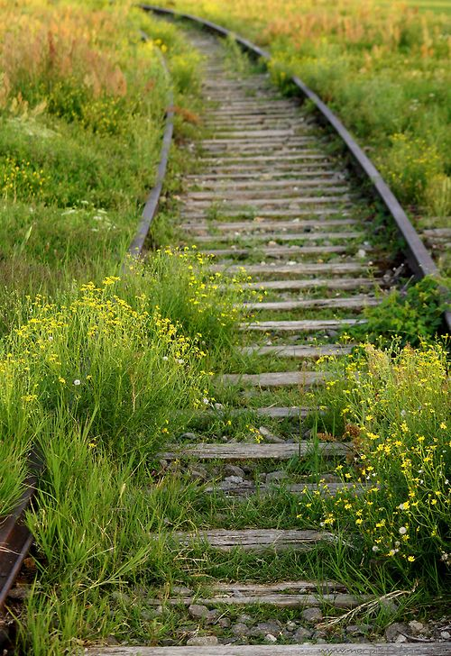 Old train tracks in Tempelhof, Berlin, Germany by Nordmensch