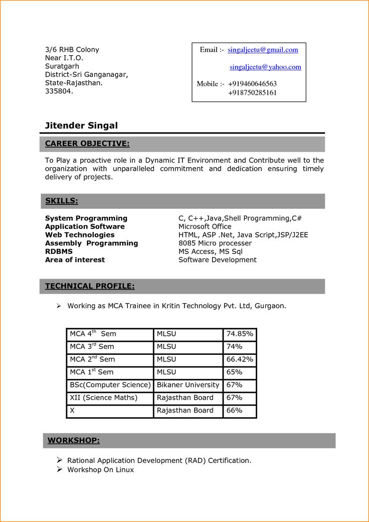 sample resume for computer science student free resume example